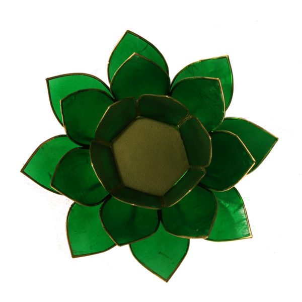 Lotus Leuchte - Grün