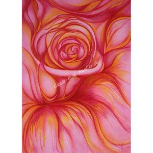 Die rose - postkarte