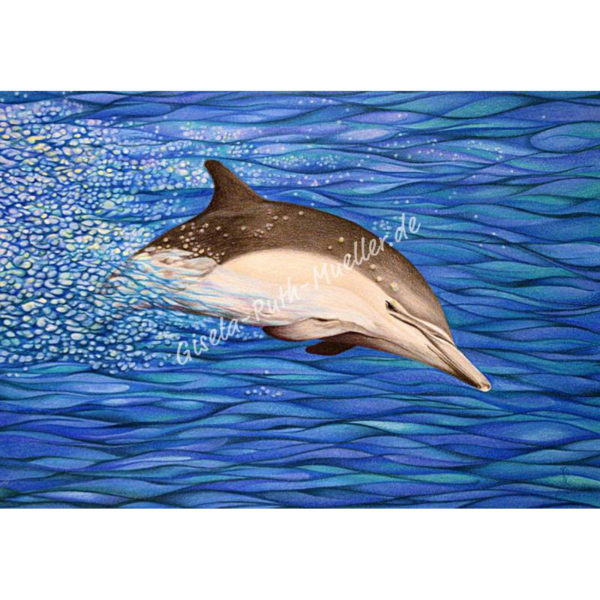 Energie-Delphin - Postkarte