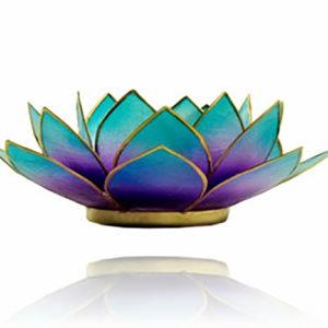 Lotus Leuchte - blau/violett