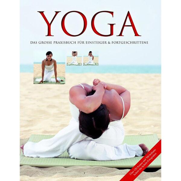 Yoga – Das große Praxisbuch für Einsteiger & Fortgeschrittene – Inge Schöps